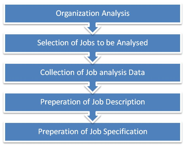 Job Analysis Job Description Job Specification  BbaMantra